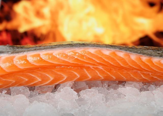 Harga Jual Ikan Salmon