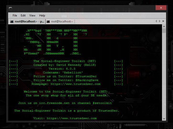 tor browser установить в linux mint hyrda