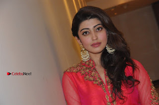 South Indian Celebrities Pos at Love For Handloom Collection Fashion Show  0149.jpg