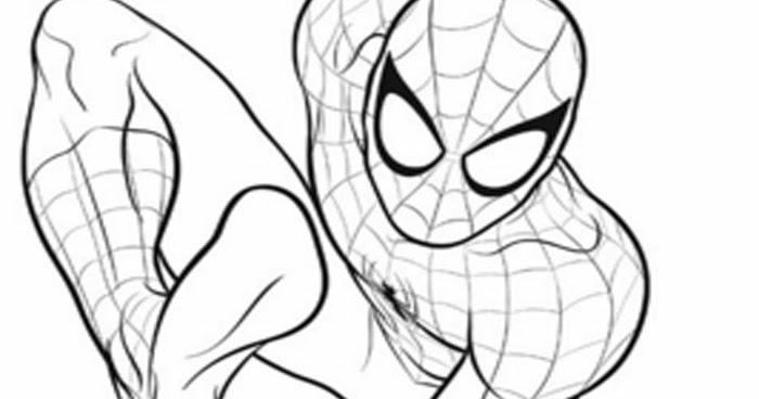 Mewarnai Gambar Kartun Spiderman Hitam Putih  Aneka