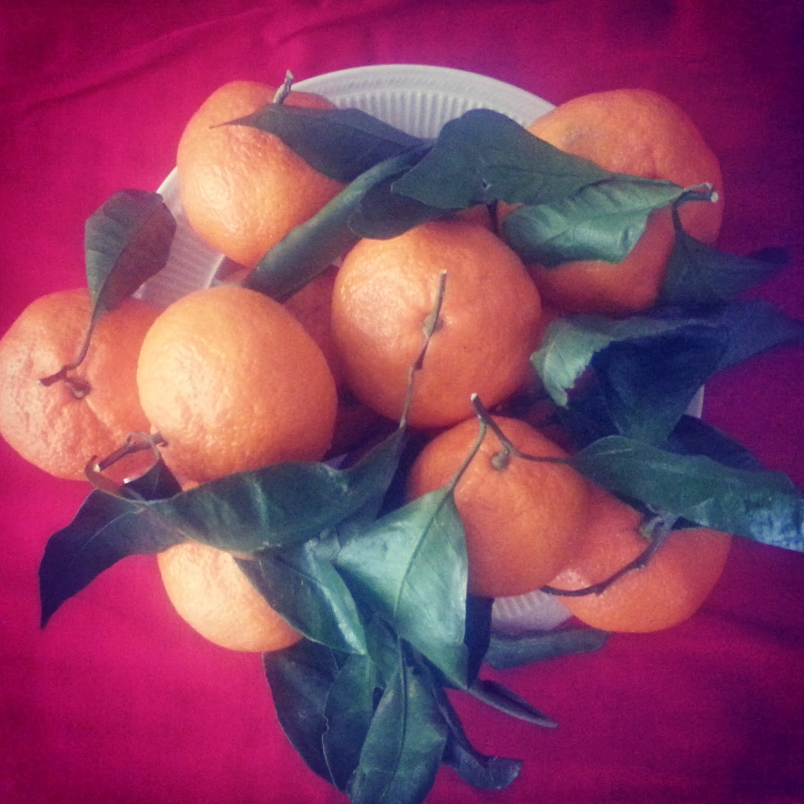 "A bowlful of satsumas  |  ""Hello, December"" on a feathery*nest  