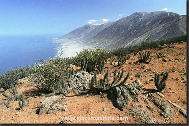 www.viajesyturismo.com.co608x408
