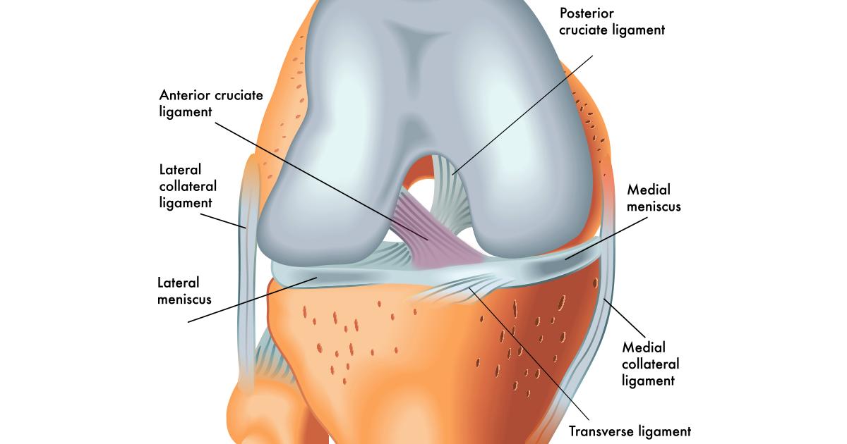 Penyakit pada arthritis