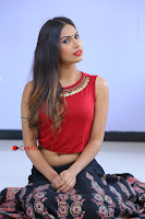 Telugu Actress Nishi Ganda Stills in Red Blouse and Black Skirt at Tik Tak Telugu Movie Audio Launch .COM 0128.JPG
