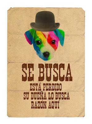 Cartel de perro perdido El perro arcoíris sonríe en Cice