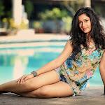 Cute Poonam Bajwa Hot Pics