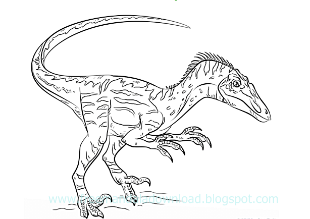 wie ein dinosaurier zu ziehen  free mandala download