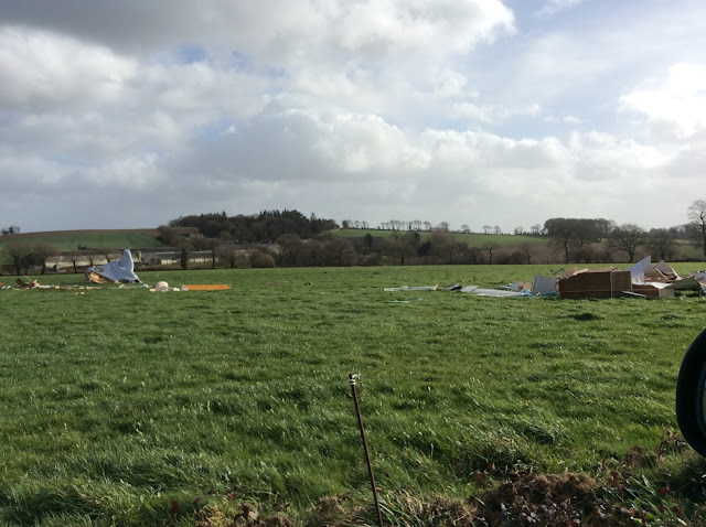 Storm damage in Huelgoat, Brittany