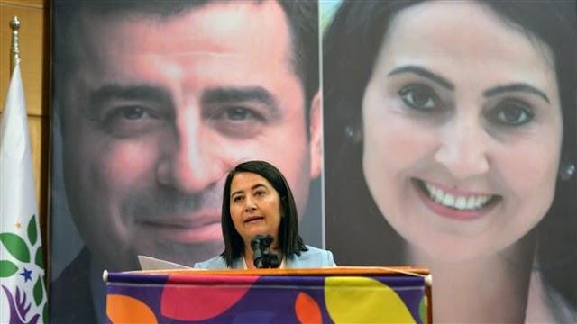 Turkey's pro-Kurdish HDP party picks new co-leader as Serpil Kemalbay