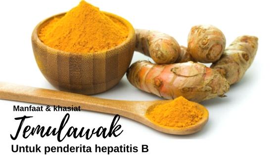 Khasiat & Manfaat Temulawak Bagi Penderita Hepatitis B