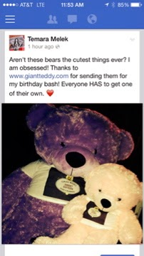 Giant Teddy bears had a great time celebrating at Temara Melek's Sweet 16 Birthday Party