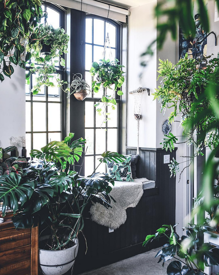"Decoration trends: ""Urban Jungle"" style"