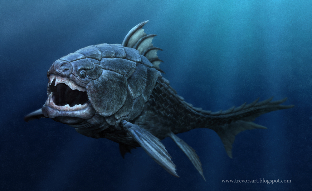 Fish as old as dinosaurs discovered