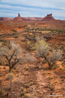Rooster & Setting Hen Buttes in Valley of the Gods, Utah.