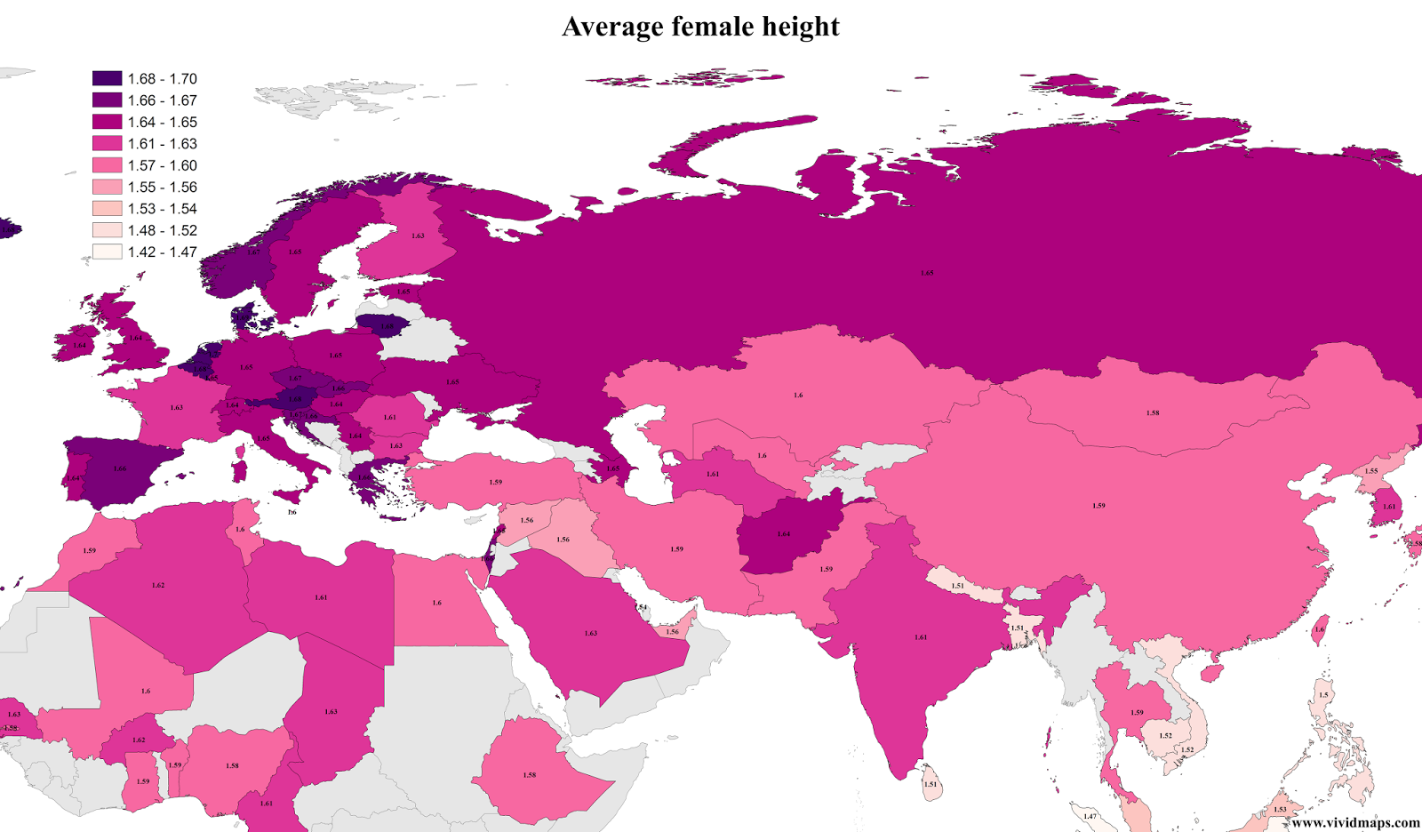 Average female height
