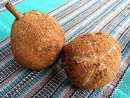 Durian Botak Tanpa Duri