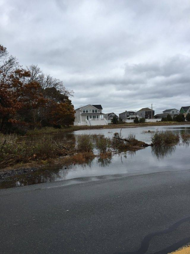 Cranberry County Magazine King Tide