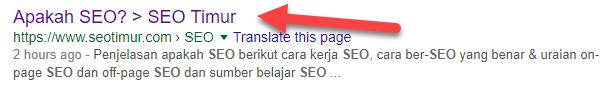 SEO Timur Di Google