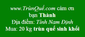 Trùn quế về Nam Định