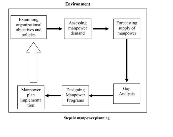 5 steps in manpower planning