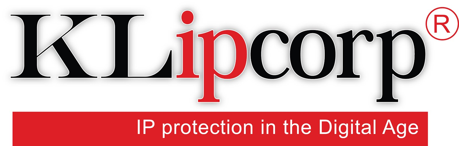 Cyber and IP protection Services