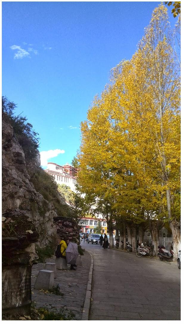 西藏拉薩最美的角落