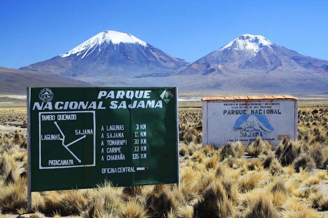 Parque Sajama – Bolivia