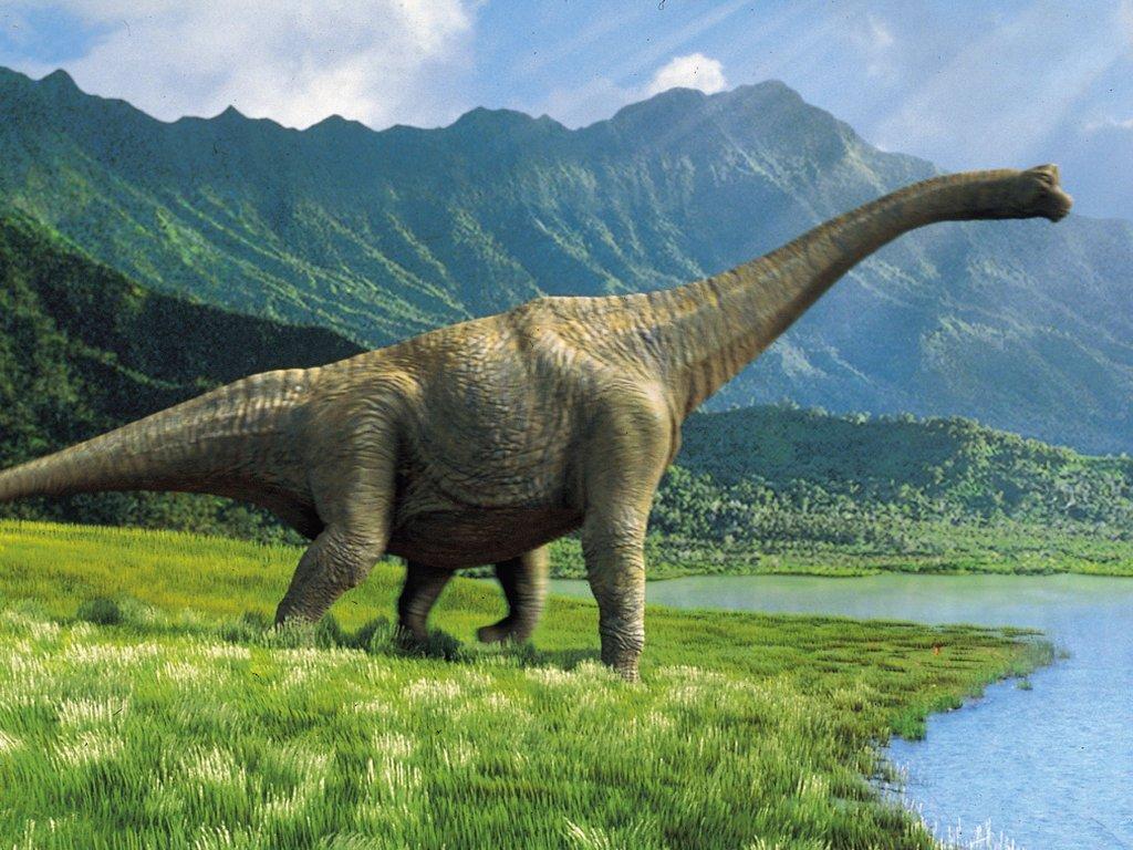 Dinosaur hd wallpapers | Movies Songs Lyrics