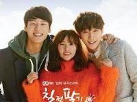SINOPSIS Persevere Goo Hae Ra Episode 1 - 12 END (2015)