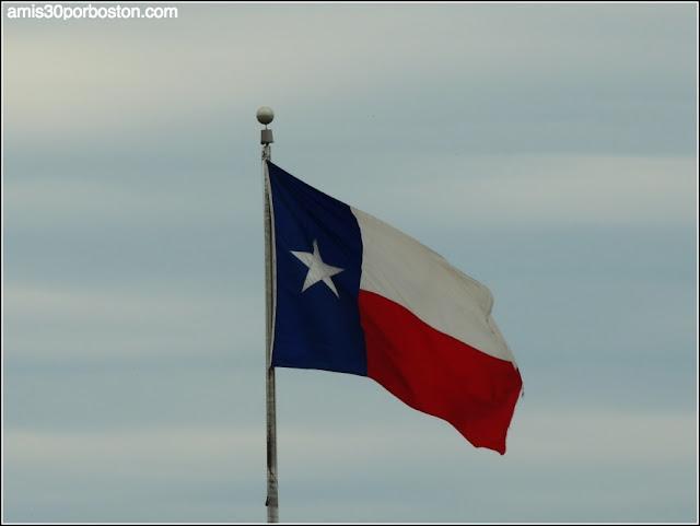 Bandera del Estado de Texas