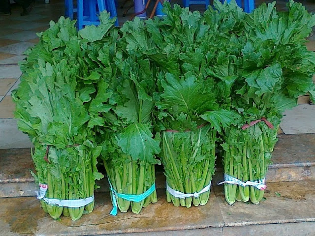 Meo Cabbages – Speciality in Sapa 1