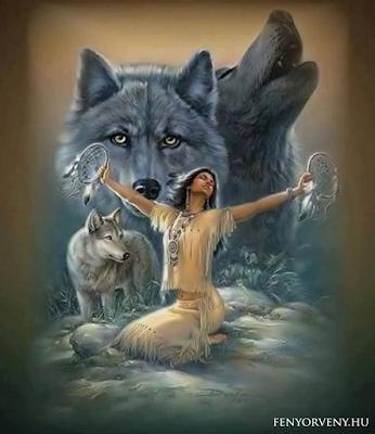 Indián tanítások: Melyik farkas fog győzni?