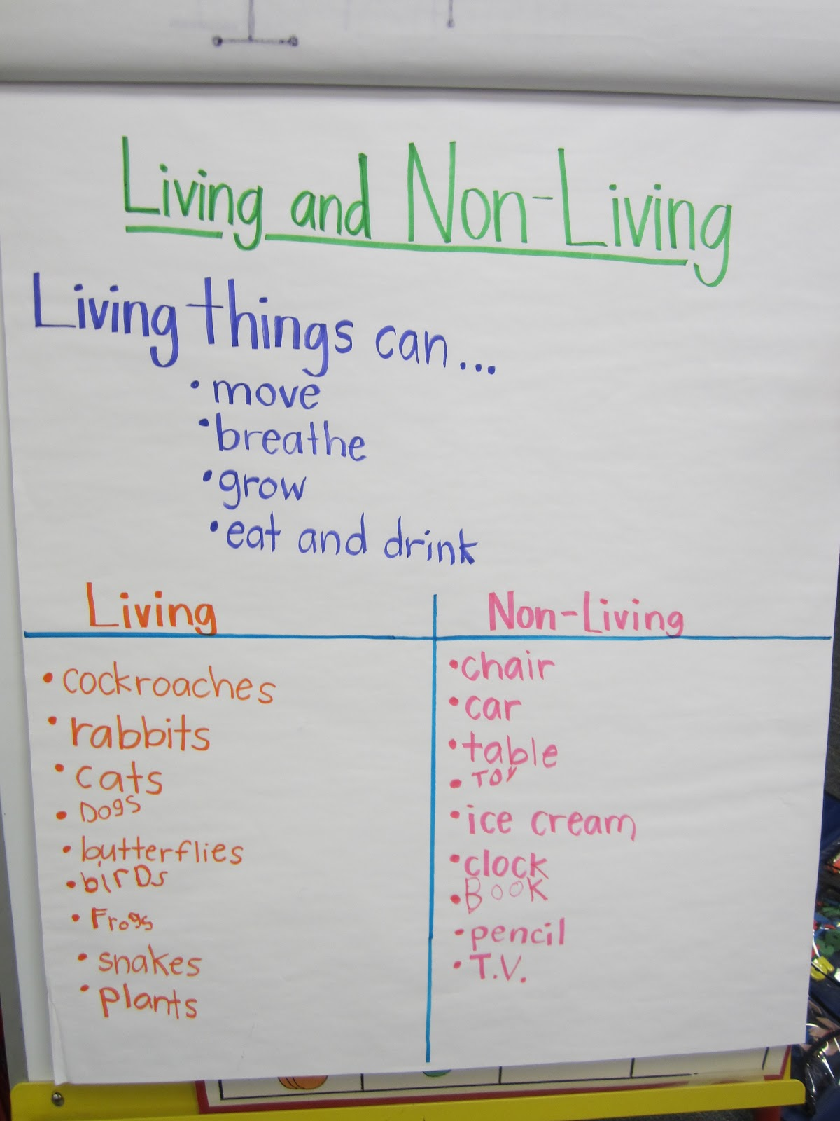 Kindergarten Is Kool Living And Nonliving Things