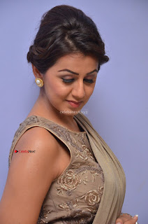 Nikki Galrani in Saree 046.JPG