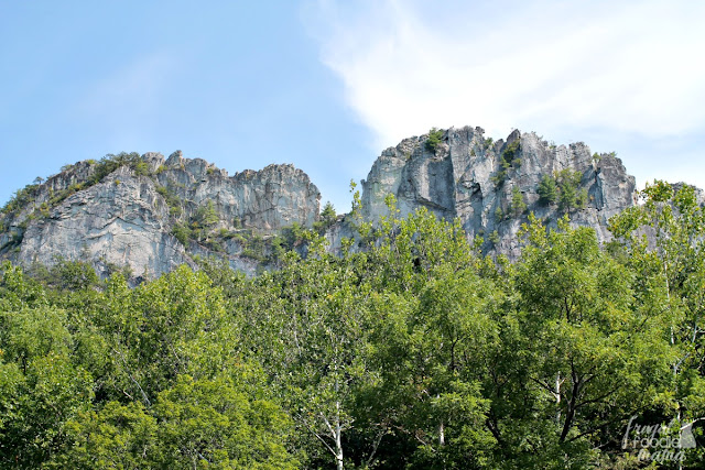 Easily one of the most well recognized & iconic rock formations in West Virginia, Seneca Rocks has been attracting hikers & rock climbers to the area for decades. The Seneca Rocks Hiking Trail is a little over 2 1/2 miles long with an elevation gain of 700+ feet.