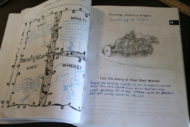 10 Subject Portfolio by The Thinking Tree