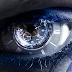 Senda del Visionario Nivel 05 - Determina