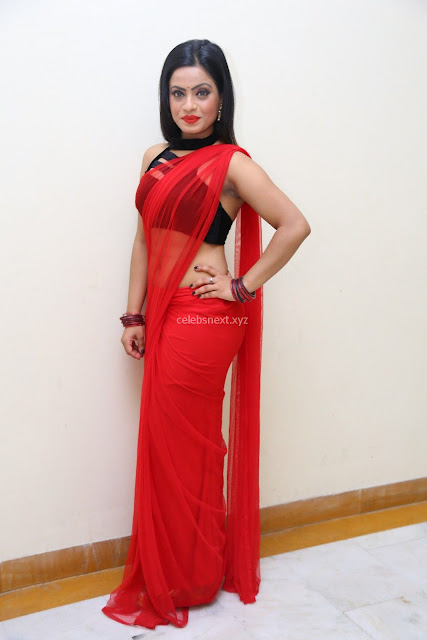 Aasma Syed in Red Saree Sleeveless Black Choli Spicy Pics ~  Exclusive Celebrities Galleries 004.jpg