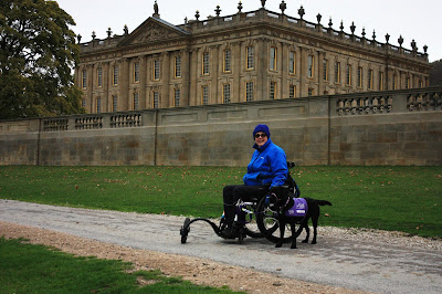 Photo of me in my wheelchair with freewheel attachment
