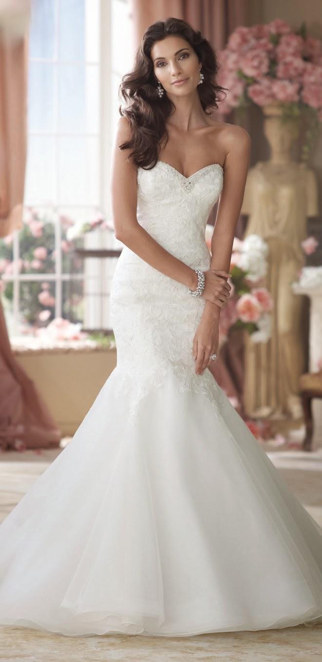 David Tutera Mermaid Wedding Dresses 49 Popular test