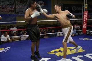 Teknik Bolo Punch