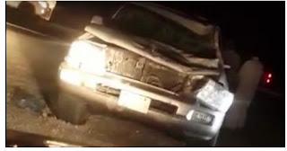 شاهد بالفيديو حادث اصطدام سيارة بجمل  بالسعودية