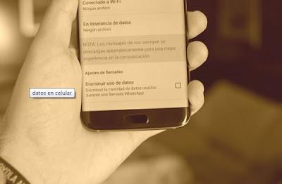 aplicacion-consumidora-datos1