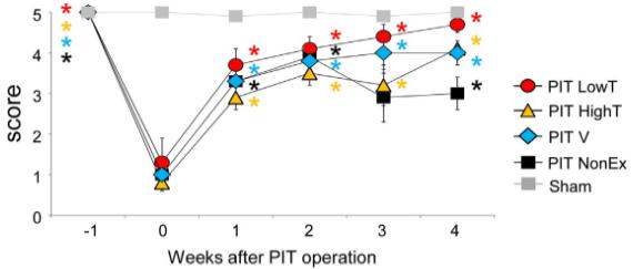 図:運動強度と脳卒中からの回復 ビーム歩行テスト