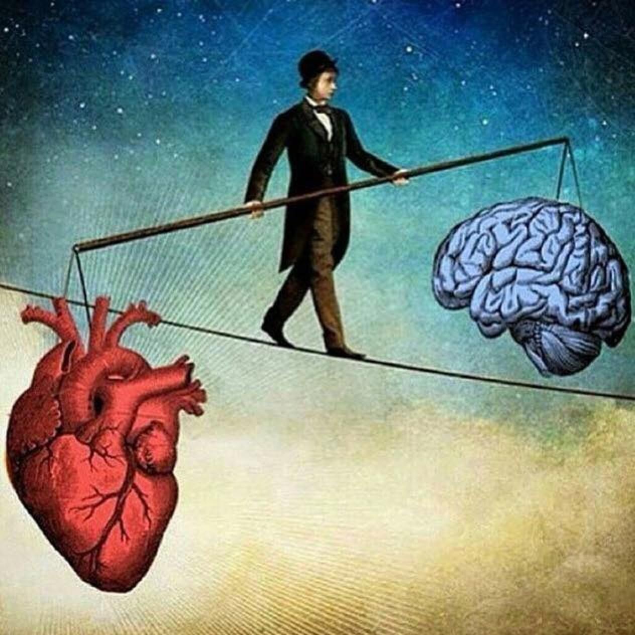 التوازن بين المخ والقلب