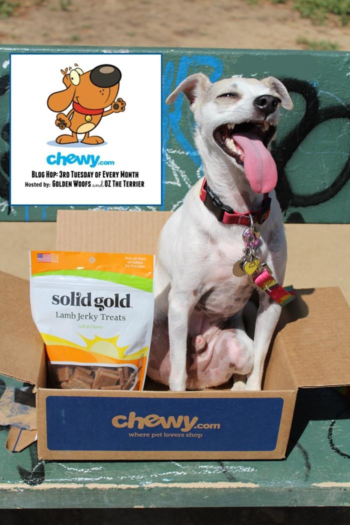 Chewy.com Blog Hop