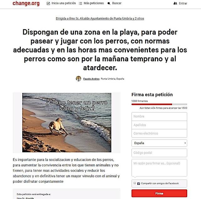 imagina65: la zona animal : PERROS SIN PLAYA