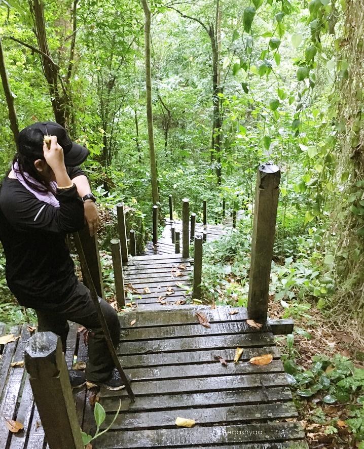 bukit kasut niah national park