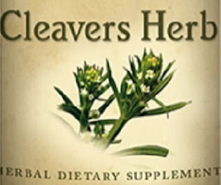 http://www.savingshepherd.com/products/cleavers-herb-liquid-tincture-all-natural-herbal-extract-normal-urinary-function