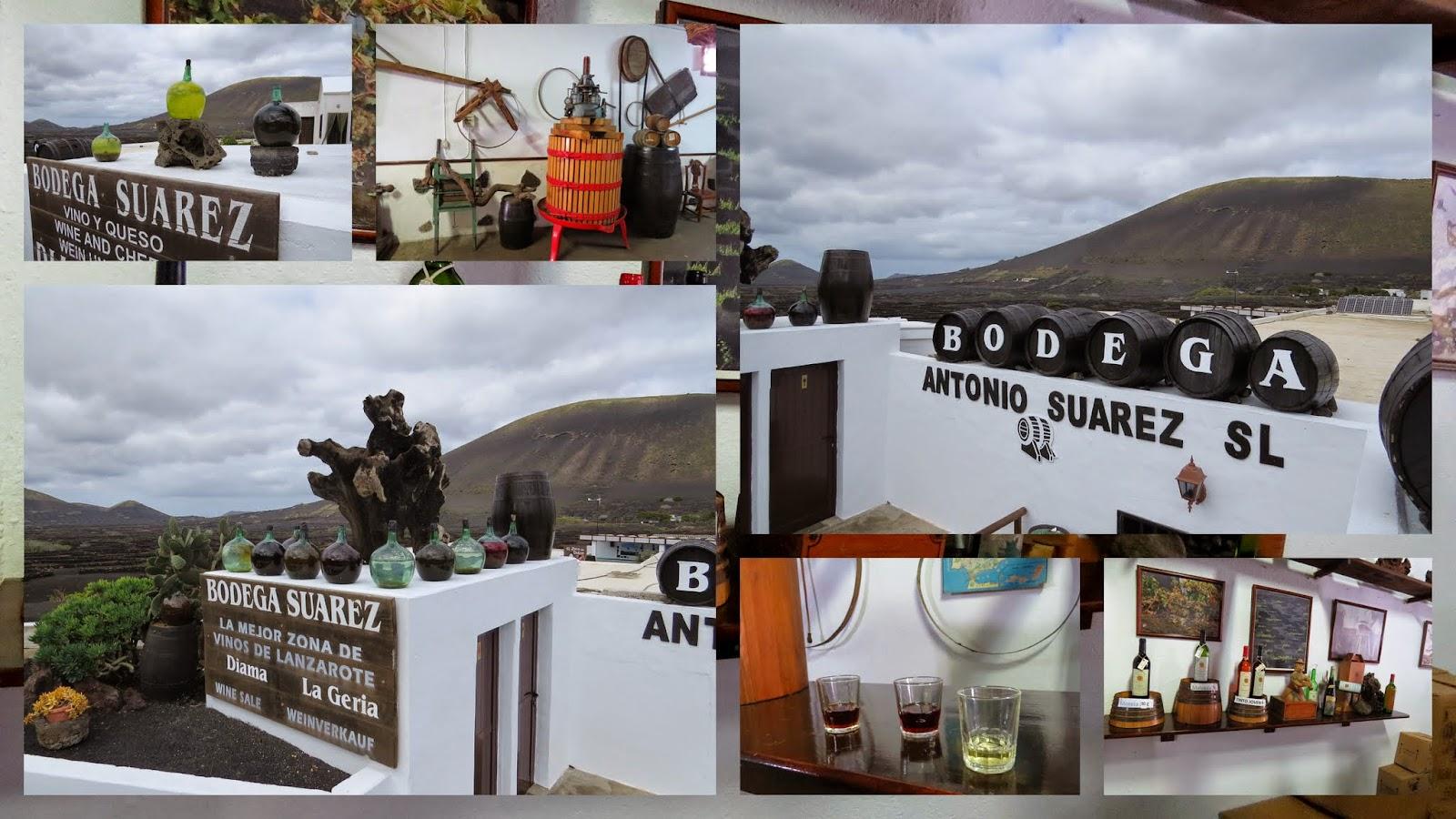 Lanzarote Wine: Bodega Suarez